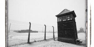 Auschwitz & Birkenau by Liam Crawley