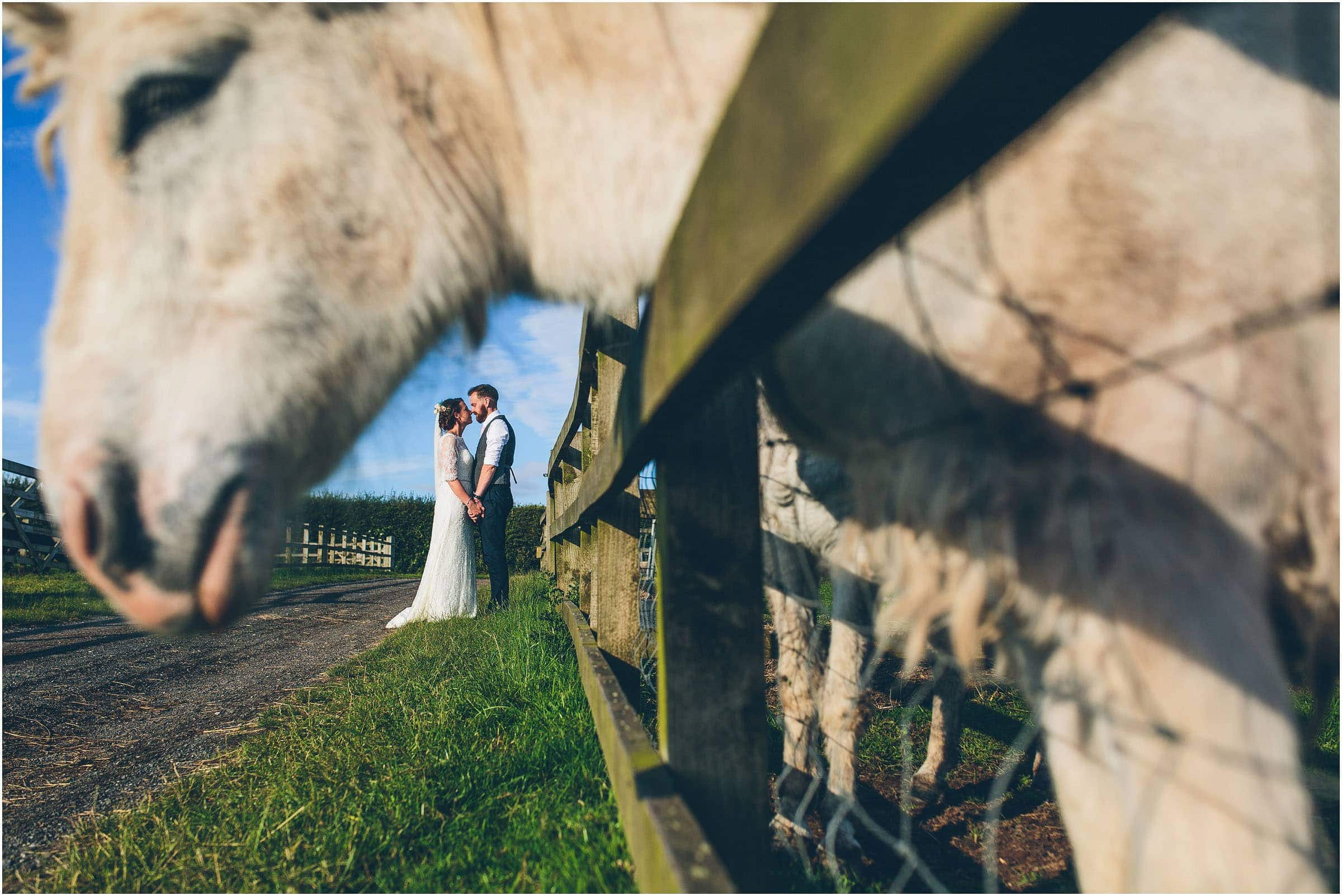 awesome wedding photographer review